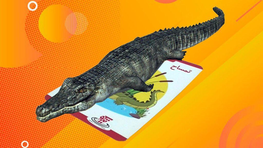 فلش کارت حیوانات سه بعدی تیکو