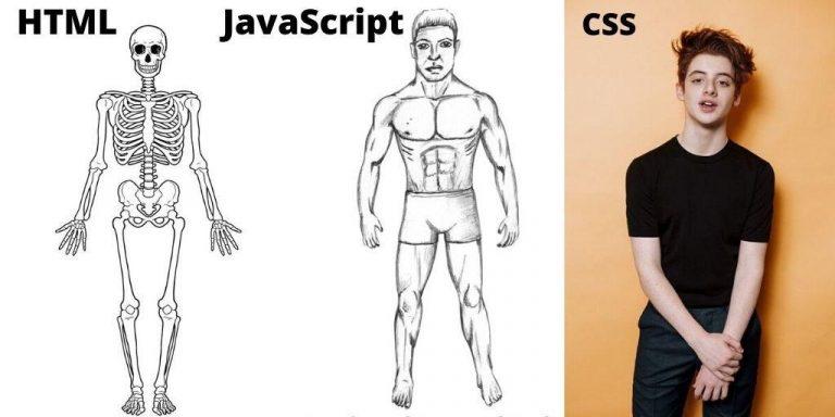 اسکلت بندی html