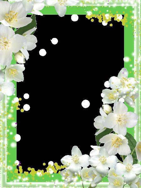 قاب عکس زیبا برای فتوشاپ